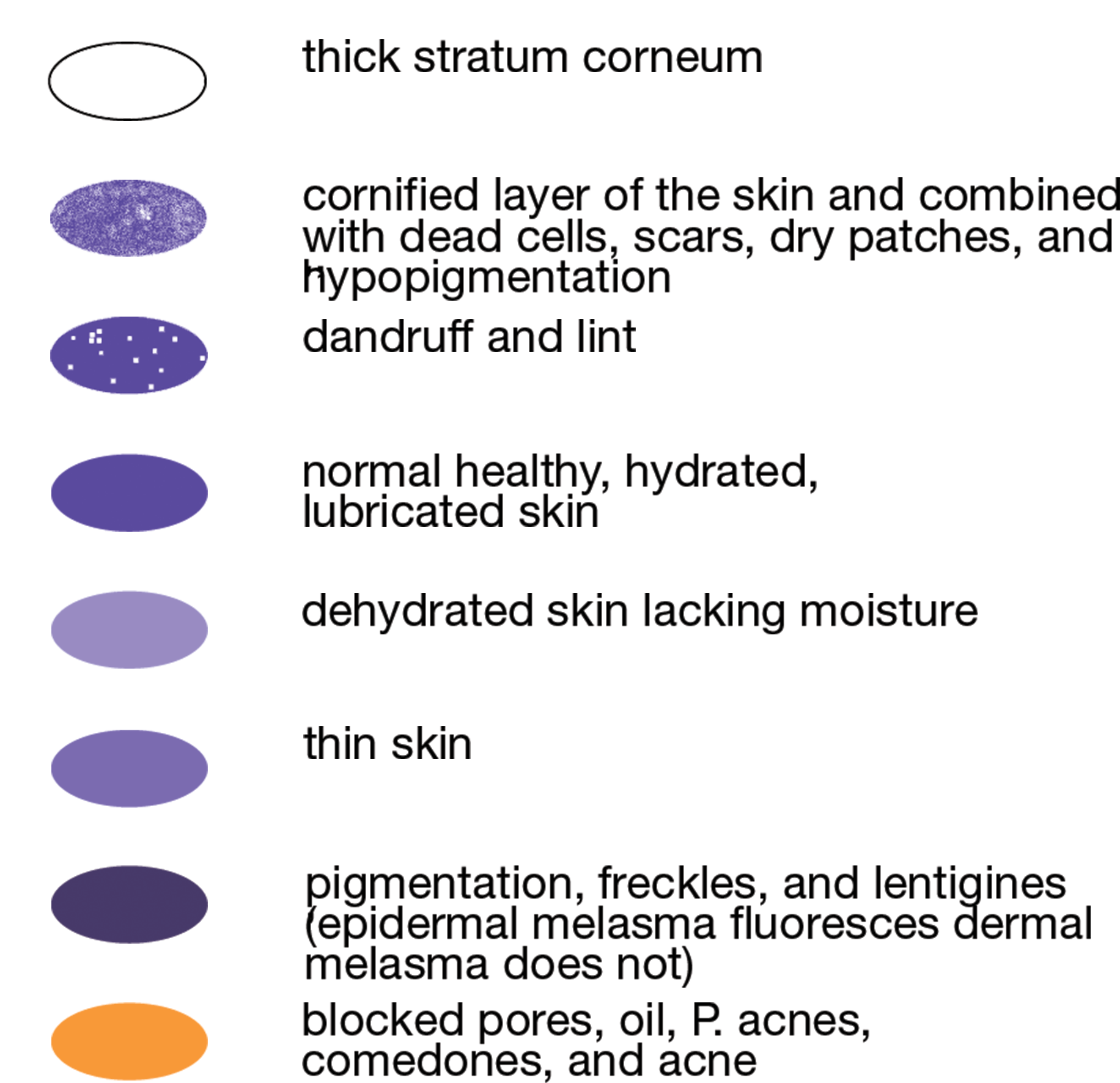 UV light guide
